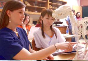 Студенты колледжа изучают скелет животного