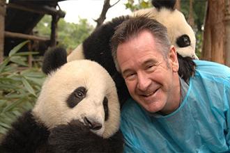 Зоолог и панды