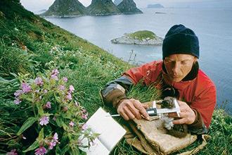 Специалист-эколог на экспедиции