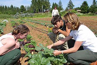 Ученики земледельцы получают практический опыт