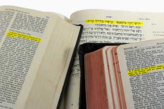 Много словарей с различных языков