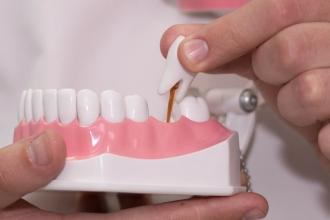 Макет зубных протезов