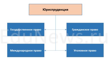 Диаграмма направления юриспруденции