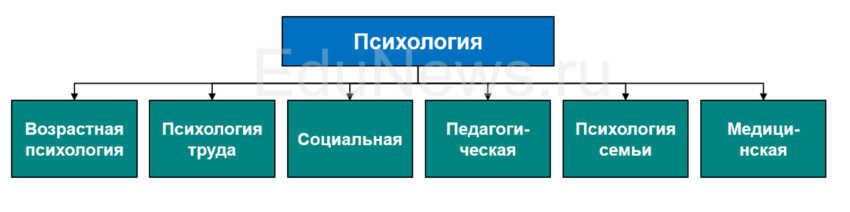 Диаграмма: виды направлений в психологии