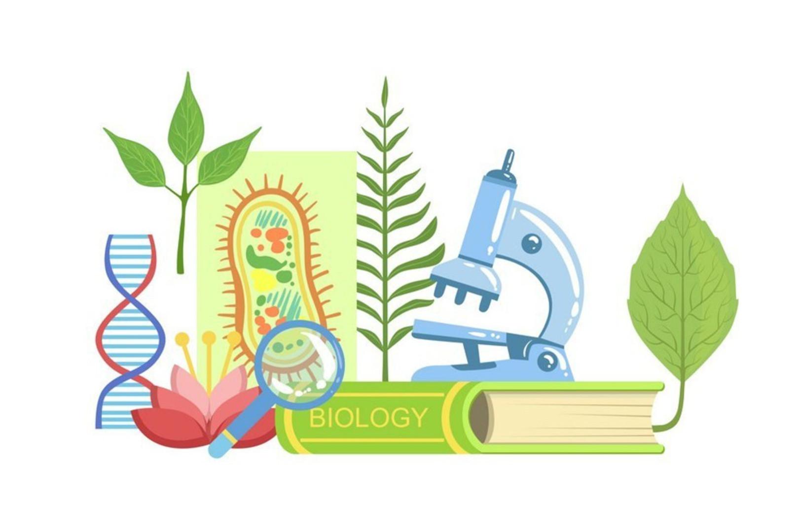 Книга по биология, микроскоп, лупа, литься растений